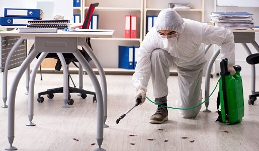 Commercial Pest Control Services in Sydney